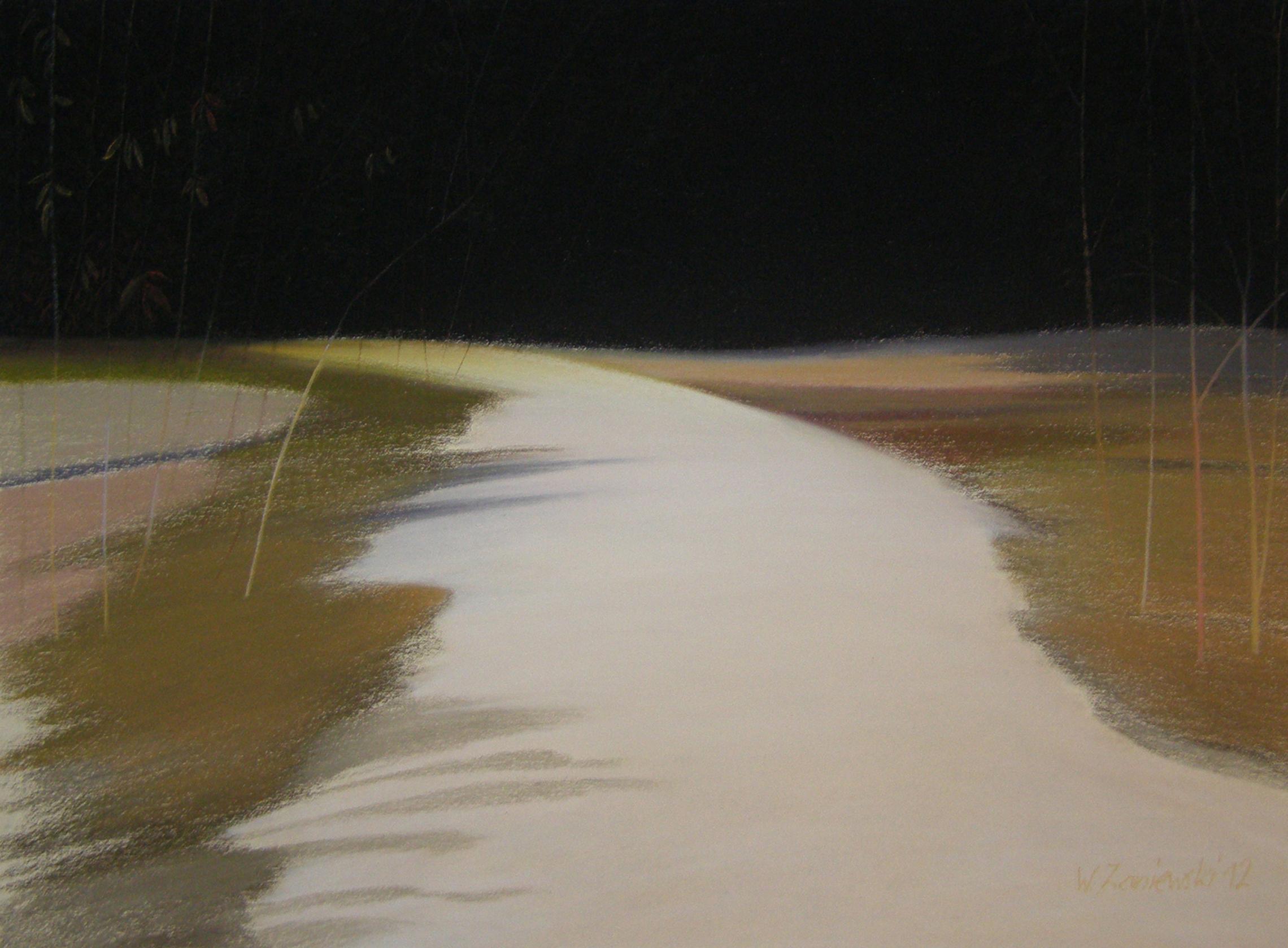Pastel - z cyku Wydmy 2012, 49 x 64 cm