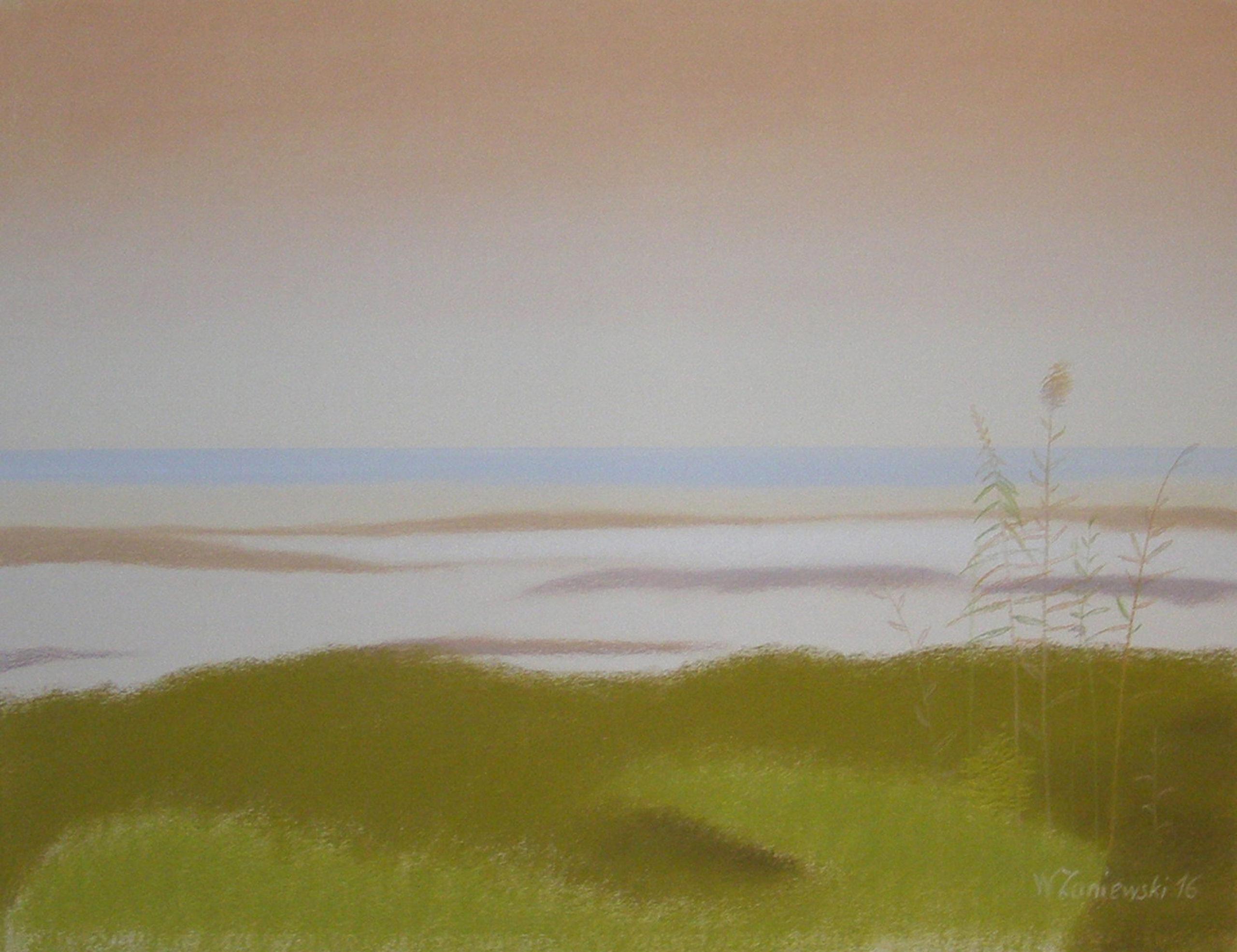 Pastel - z cyklu Wydmy 2016, 49 x 64 cm