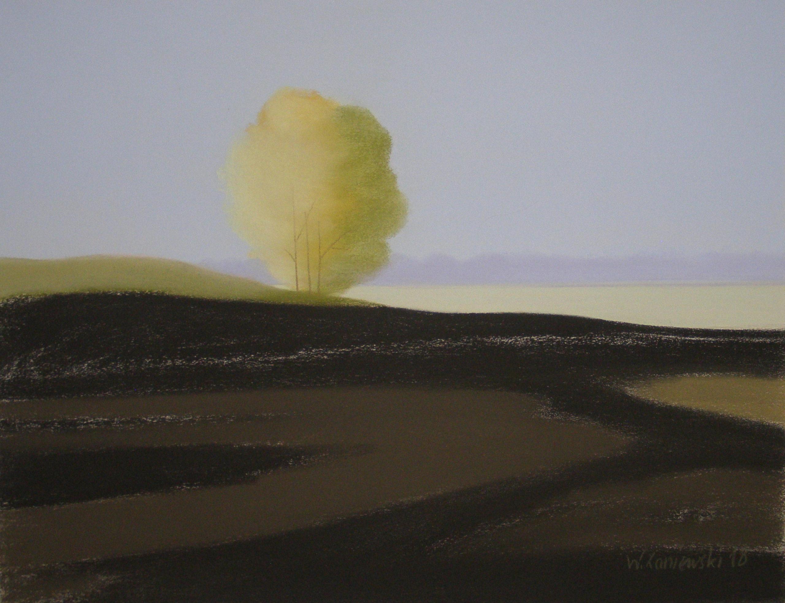 Pastel - z cyklu Łąki 2018, 49 x 64 cm